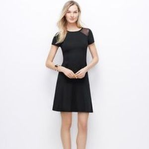Like New Ann Taylor Mesh shoulder Mini Black Dress